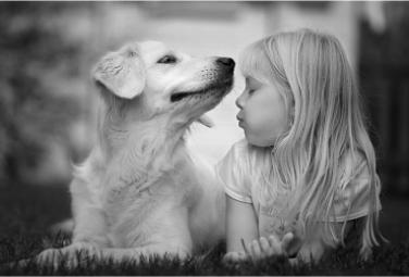О пользе домашних животных для детей